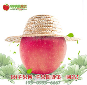 苹果期货网