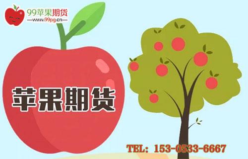 苹果期货有没有夜盘?苹果期货交易时间是什么?