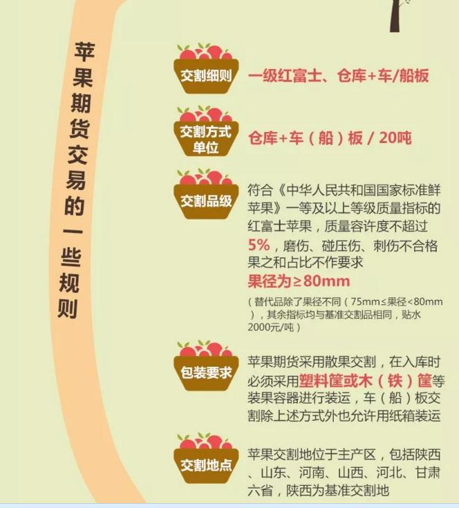 苹果期货交易规则.png