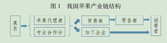 我国苹果产业链结构.png