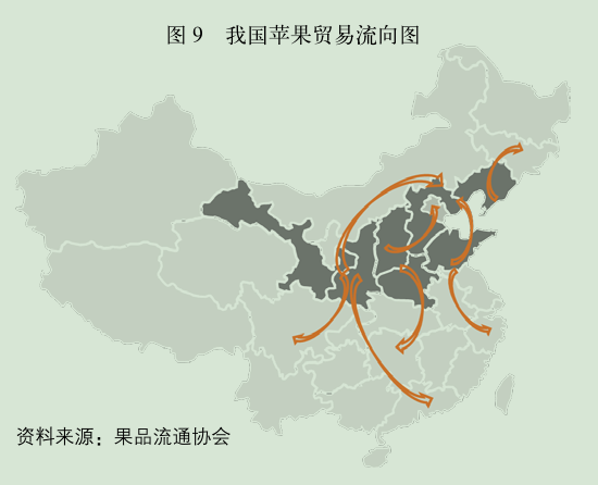 我国苹果贸易流向图.png